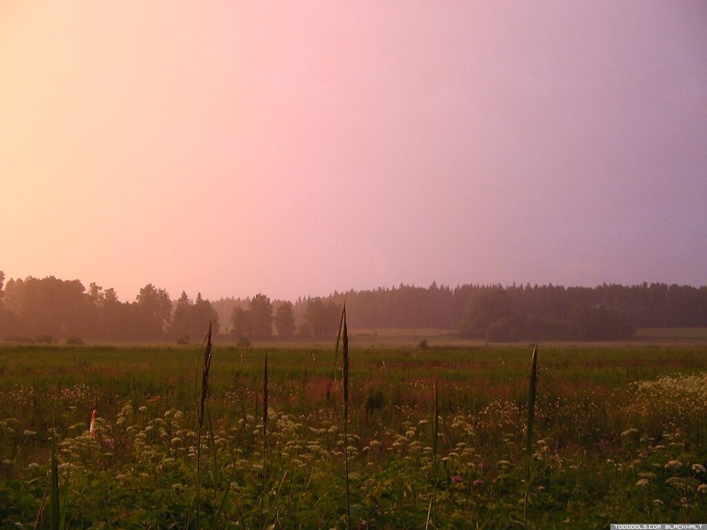 Landscape, 42, Sunset, Rainy