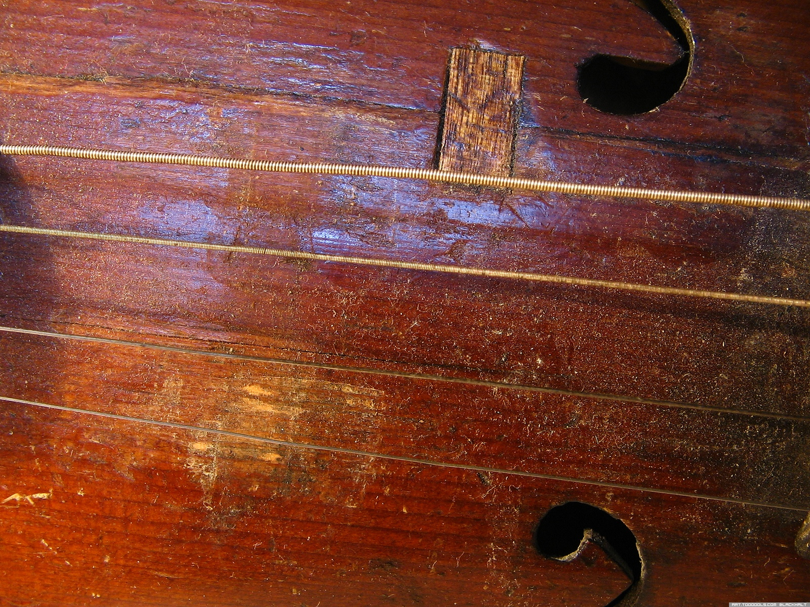 Violin fragment, Strings, 4